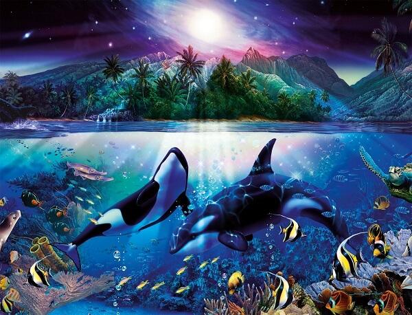 donde viven las orcas2
