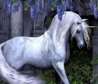 Donde Viven Los Unicornios?